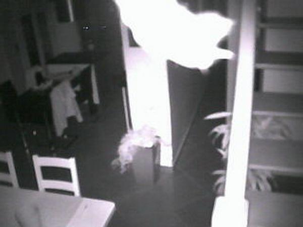 Présences de nuit dans les maisons : des MIDIM