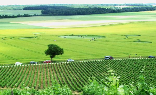 Agroglyphe du 2 juin 2017 en France : des indices significatifs